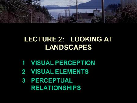 LECTURE 2: LOOKING AT LANDSCAPES 1VISUAL PERCEPTION 2VISUAL ELEMENTS 3PERCEPTUAL RELATIONSHIPS.