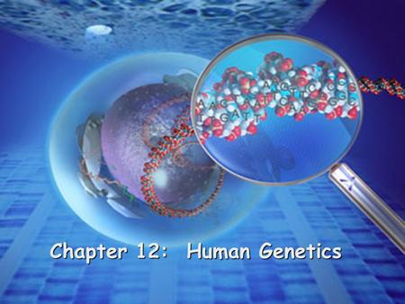 Chapter 12: Human Genetics. Human Genome Project identify all the approximately 20,000- 25,000 genes in human DNA determine the sequences of the 3 billion.