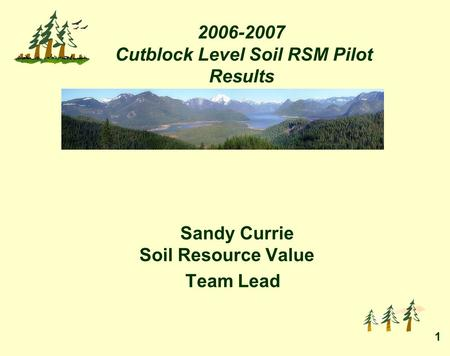 1 2006-2007 Cutblock Level Soil RSM Pilot Results Sandy Currie Soil Resource Value Team Lead.