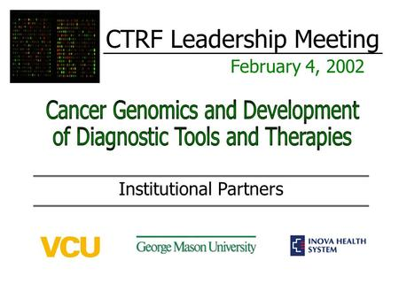 CTRF Leadership Meeting February 4, 2002 Institutional Partners.