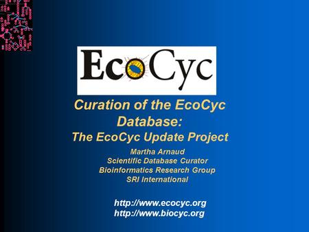 Curation of the EcoCyc Database: The EcoCyc Update Project Martha Arnaud Scientific Database Curator Bioinformatics Research Group SRI International