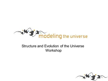 Structure and Evolution of the Universe Workshop.