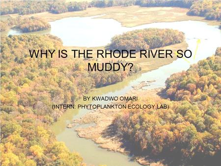 WHY IS THE RHODE RIVER SO MUDDY? BY KWADWO OMARI (INTERN: PHYTOPLANKTON ECOLOGY LAB)