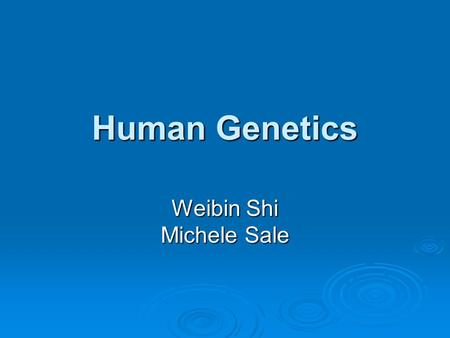 Human Genetics Weibin Shi Michele Sale. Contact Information  Shi: 243-9420  Sale: 982-0368.