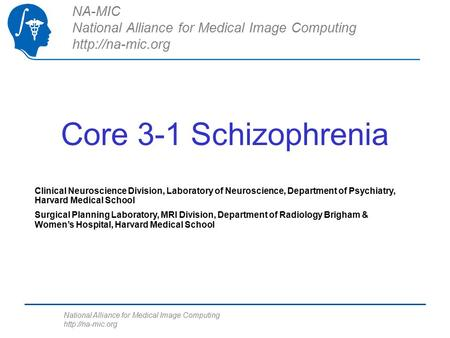 National Alliance for Medical Image Computing  Core 3-1 Schizophrenia NA-MIC National Alliance for Medical Image Computing