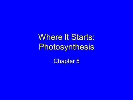 Where It Starts: Photosynthesis Chapter 5. Sunlight and Survival Autotrophs use nonliving sources to build their own food Heterotrophs feed on living.