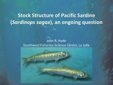 Stock Structure of Pacific Sardine (Sardinops sagax), an ongoing question John R. Hyde Southwest Fisheries Science Center, La Jolla.