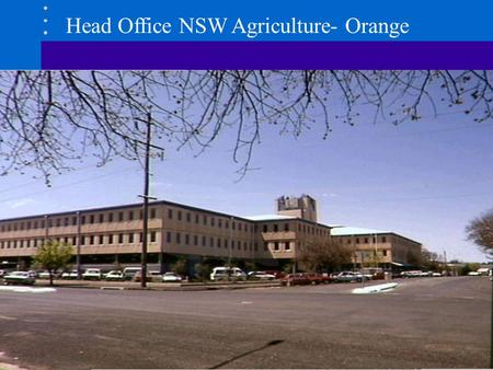 Head Office NSW Agriculture- Orange. Innovative and Internationally Competitive Agricultural Industries Sustainable Management of Natural Resources for.