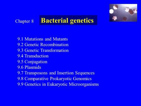Bacterial genetics Chapter Mutations and Mutants