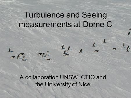 Turbulence and Seeing measurements at Dome C A collaboration UNSW, CTIO and the University of Nice.