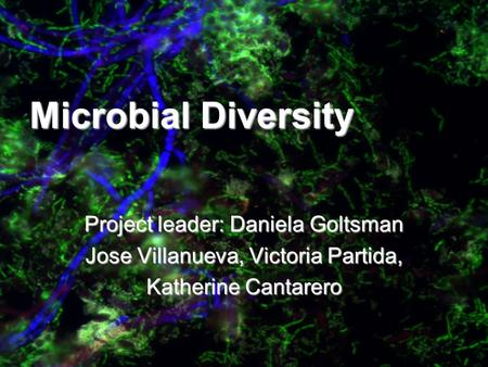Microbial Diversity Project leader: Daniela Goltsman