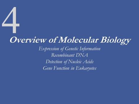 4 Overview of Molecular Biology Expression of Genetic Information Recombinant DNA Detection of Nucleic Acids Gene Function in Eukaryotes.