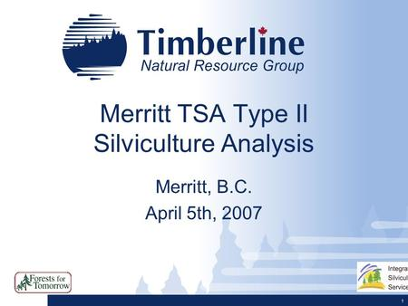 1 Merritt TSA Type II Silviculture Analysis Merritt, B.C. April 5th, 2007.