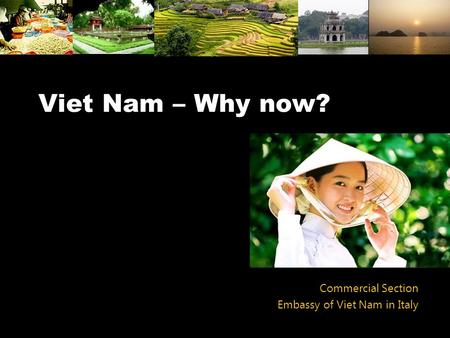 Viet Nam – Why now? Commercial Section Embassy of Viet Nam in Italy.