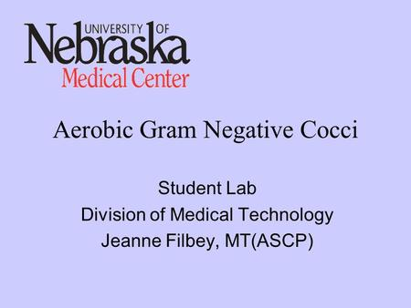 Aerobic Gram Negative Cocci Student Lab Division of Medical Technology Jeanne Filbey, MT(ASCP)
