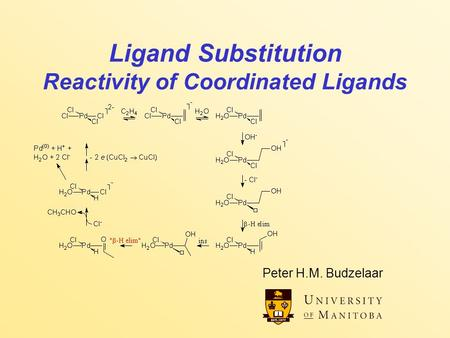 Ligand Substitution Reactivity of Coordinated Ligands Peter H.M. Budzelaar.