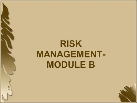 RISK MANAGEMENT-MODULE B