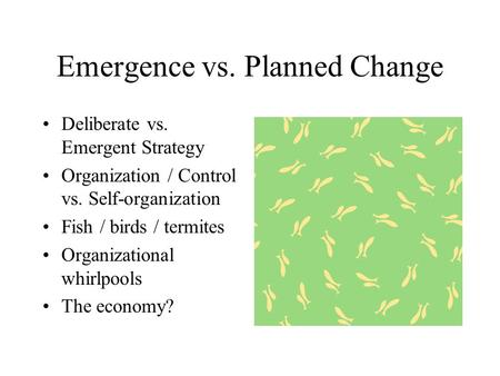 Emergence vs. Planned Change Deliberate vs. Emergent Strategy Organization / Control vs. Self-organization Fish / birds / termites Organizational whirlpools.