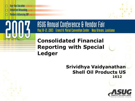 Consolidated Financial Reporting with Special Ledger