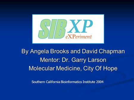By Angela Brooks and David Chapman Mentor: Dr. Garry Larson Molecular Medicine, City Of Hope Southern California Bioinformatics Institute 2004.