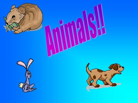 My fav animal is a tiger and A dolphin. Actually I Iove dogs, But I love every animal Made!!
