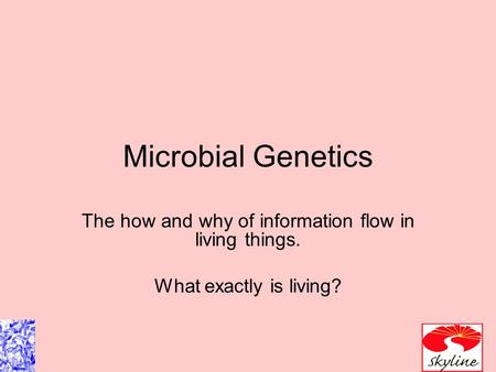 Microbial Genetics The how and why of information flow in living things. What exactly is living?