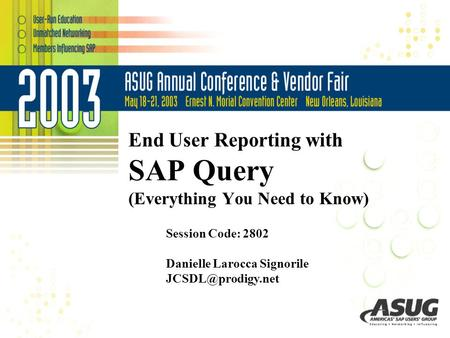 End User Reporting with SAP Query (Everything You Need to Know)
