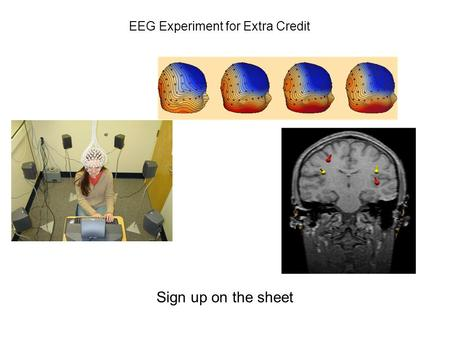 EEG Experiment for Extra Credit Sign up on the sheet.
