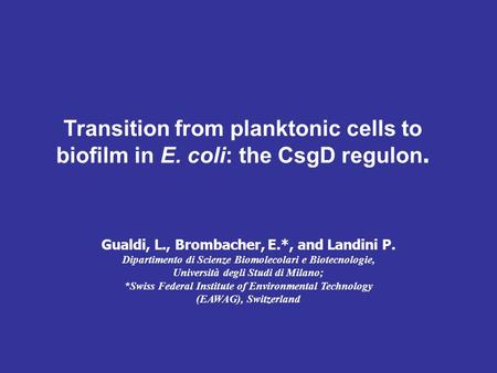 Transition from planktonic cells to biofilm in E. coli: the CsgD regulon. Gualdi, L., Brombacher, E.*, and Landini P. Dipartimento di Scienze Biomolecolari.