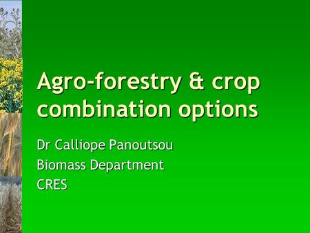 Agro-forestry & crop combination options Dr Calliope Panoutsou Biomass Department CRES.