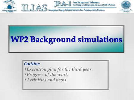 WP2 Background simulations Outline Execution plan for the third year Progress of the work Activities and news.