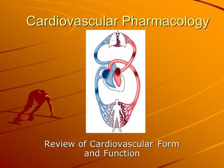 Cardiovascular Pharmacology Review of Cardiovascular Form and Function.