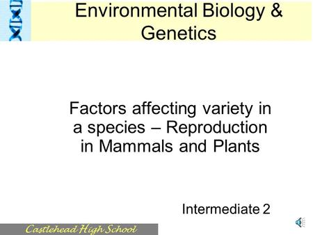 C astlehead H igh S chool Factors affecting variety in a species – Reproduction in Mammals and Plants Intermediate 2 Environmental Biology & Genetics.