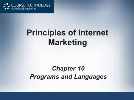 Principles of Internet Marketing Chapter 10 Programs and Languages.