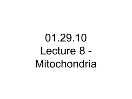 01.29.10 Lecture 8 - Mitochondria. Mitochondria perform 2 functions within the cell 1. They are the primary sites for ATP synthesis in the cell 2. They.