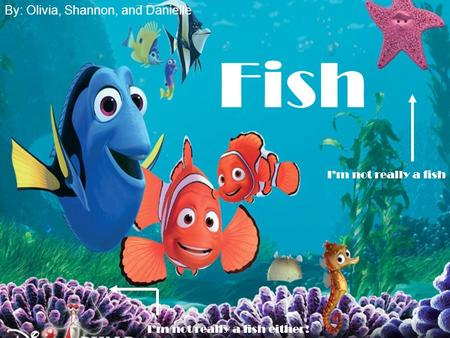 Fish By: Olivia, Shannon, and Danielle I'm not really a fish I'm not really a fish either!