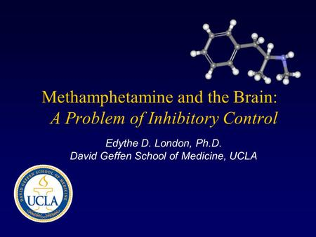 Methamphetamine and the Brain: A Problem of Inhibitory Control Edythe D. London, Ph.D. David Geffen School of Medicine, UCLA.