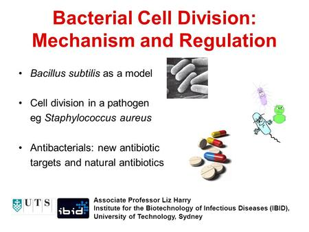 Bacterial Cell Division: Mechanism and Regulation Bacillus subtilis as a model Cell division in a pathogen eg Staphylococcus aureus Antibacterials: new.