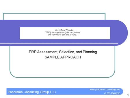Panorama Consulting Group LLC www.panorama-consulting.com +1.303.256.6253 1 ERP Assessment, Selection, and Planning SAMPLE APPROACH.
