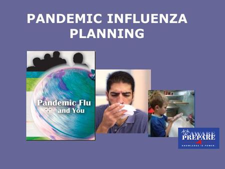 Phd dissertations on pandemic flu