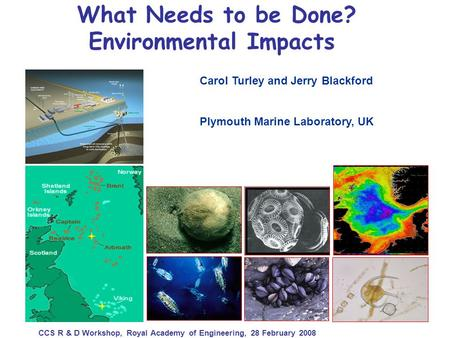 What Needs to be Done? Environmental Impacts Carol Turley and Jerry Blackford Plymouth Marine Laboratory, UK CCS R & D Workshop, Royal Academy of Engineering,