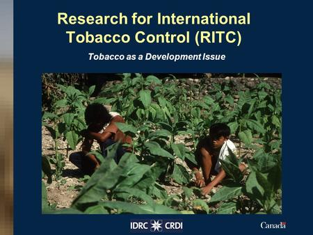 Research for International Tobacco Control (RITC) Tobacco as a Development Issue Insert your image here.