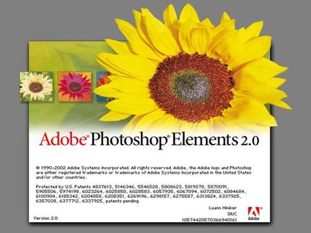Adobe Photoshop Elements v 2.0 File Types Four most universal file formats are PSDPhotoshop Document format TIFFTagged Image File Format JPEGJoint Photographic.