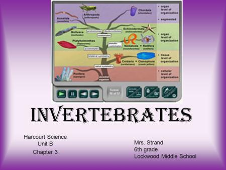 Harcourt Science Unit B Chapter 3
