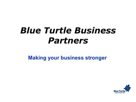 Blue Turtle Business Partners Making your business stronger.