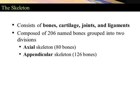 Consists of bones, cartilage, joints, and ligaments