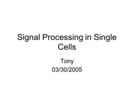 Signal Processing in Single Cells Tony 03/30/2005.