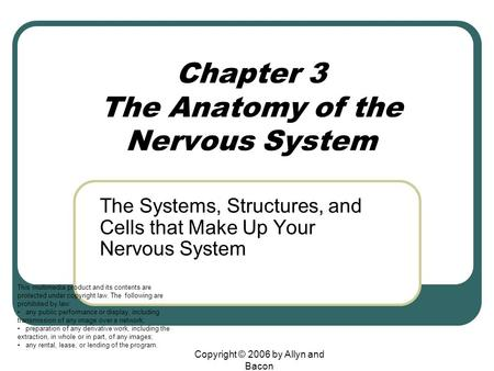 Chapter 3 The Anatomy of the Nervous System