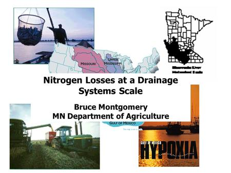 Nitrogen Losses at a Drainage Systems Scale Bruce Montgomery MN Department of Agriculture.