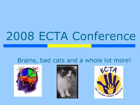 2008 ECTA Conference Brains, bad cats and a whole lot more!